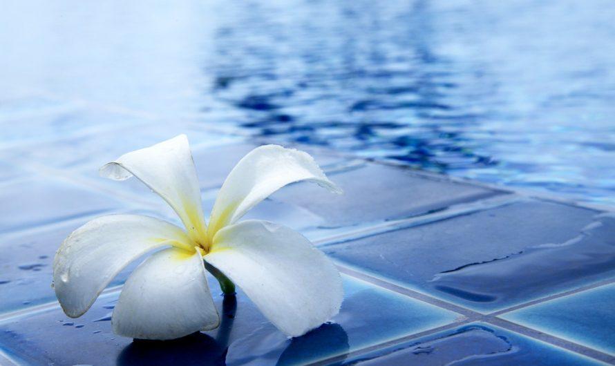 Limpiar el filtro de piscina es imprescindible para mantener la calidad de nuestra agua